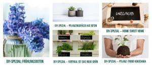Terralis bietet Tipps und Inspiration rund um den Garten